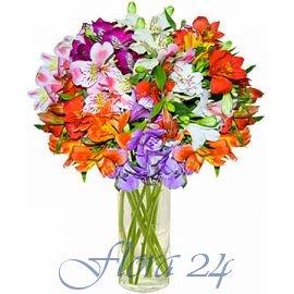 Мукачевская фирма доставки цветов доставка цветов по всему миру из казахстана